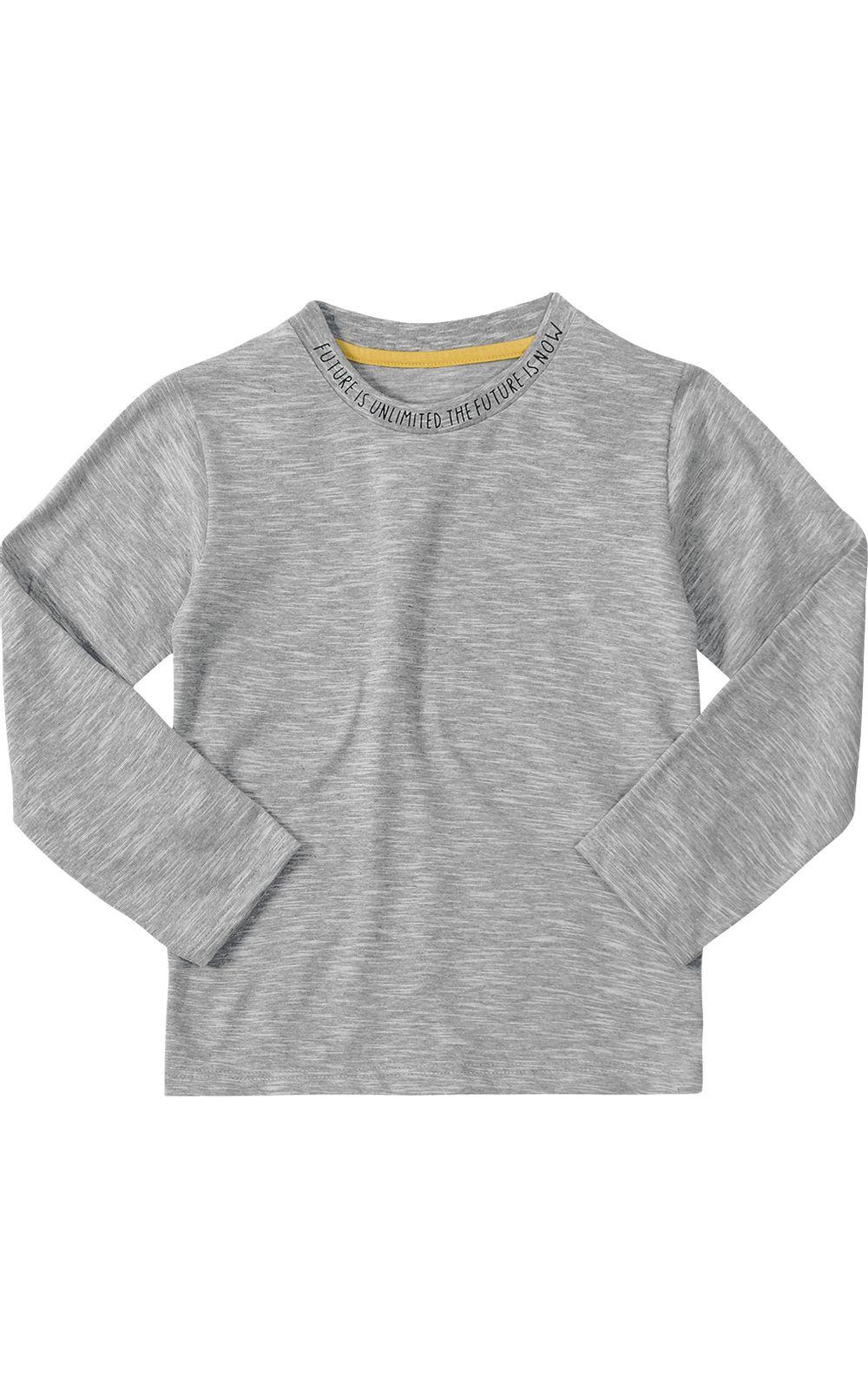 Foto 1 - Camiseta Tigor T. Tigre Cinza Menino
