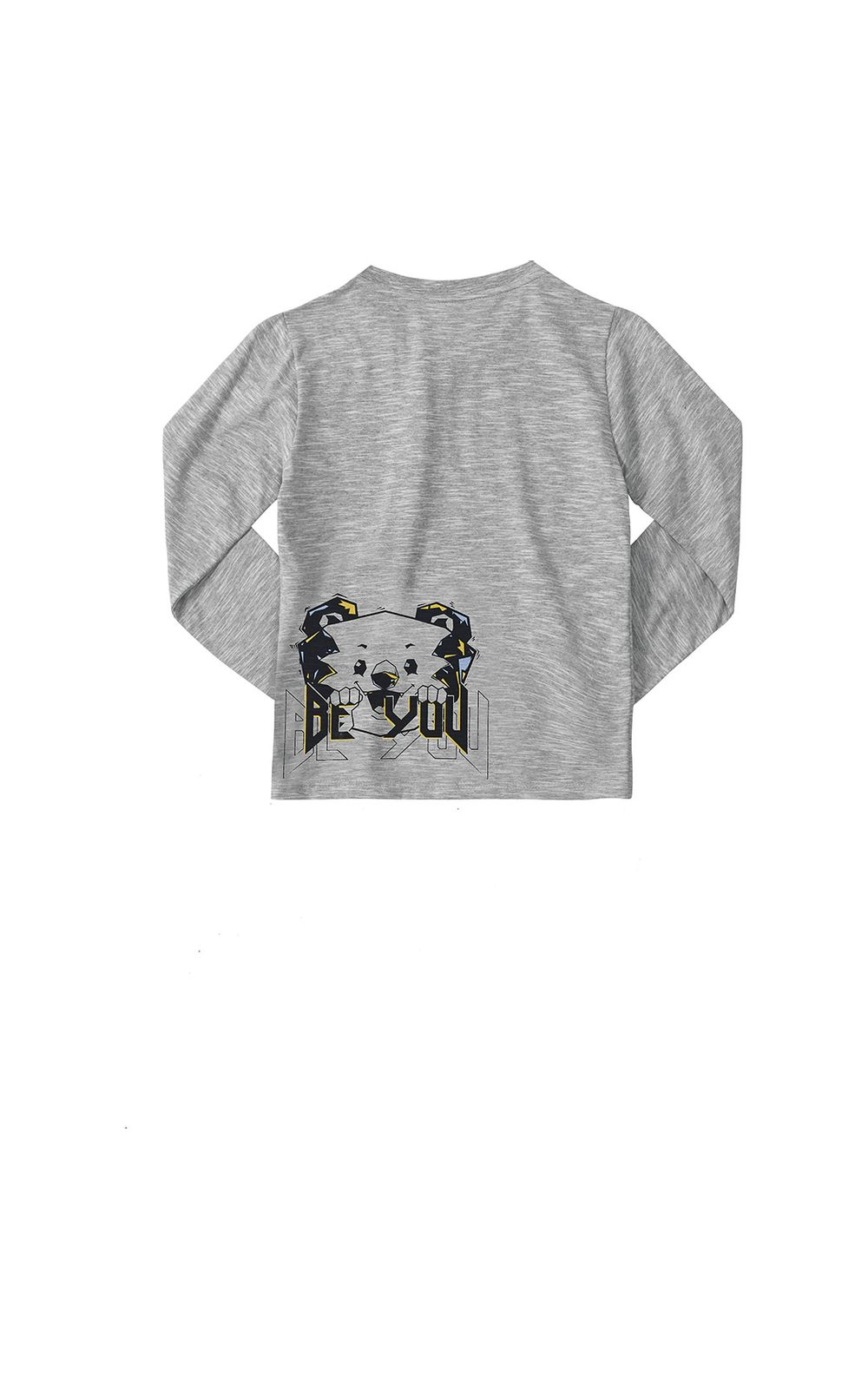 Foto 2 - Camiseta Tigor T. Tigre Cinza Menino