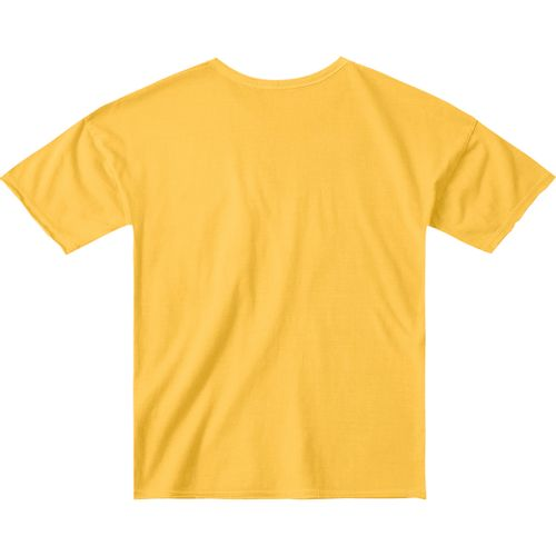 94092579b Camiseta Tigor T. Tigre Amarelo Bebê