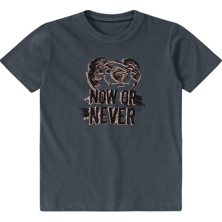 Camiseta-Tigor-Infantil-Menino---Cinza